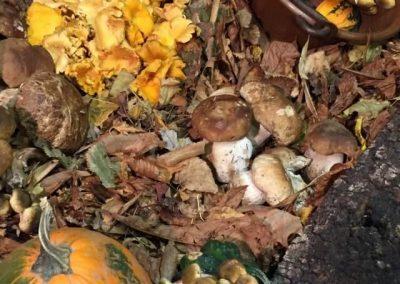 autunno a tavola5